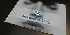 Sealy brand book